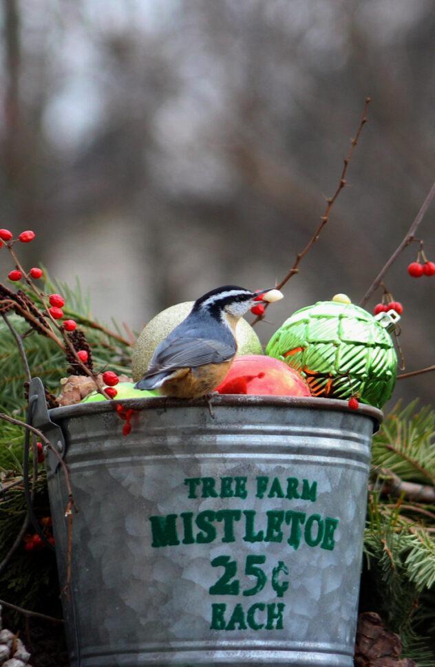 Galvanized Bucket Christmas