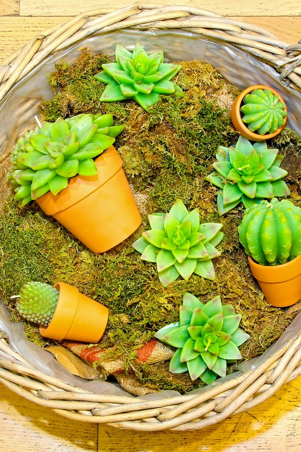 If you love Joanna Gaines and saving money, you will love these Joanna Gaines inspired farmhouse dollar store DIYs. These succulent candles look amazing in terracotta pots.