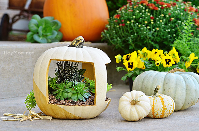 Gold Pumpkin Planter