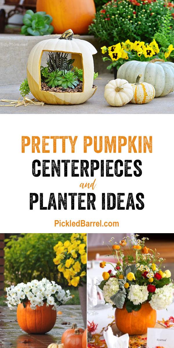 Pretty Pumpkin Centerpieces and Planter Ideas - Great Pumpkin Planter Ideas for Fall Decor Inspiration!