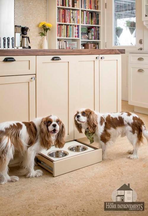 Built-in Dog Feeding Station Underneath Kitchen Cabinet