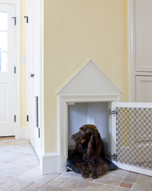 Dog Bed Built in Wall