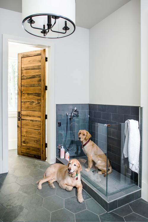 Dog Shower in Bathroom