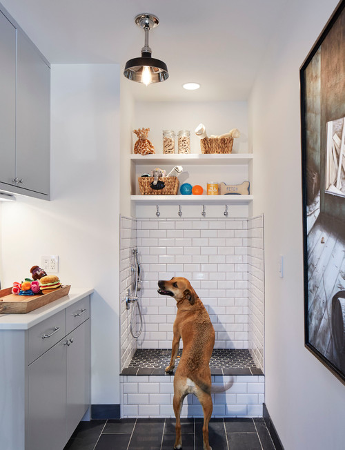 Dog Shower with Subway Tile
