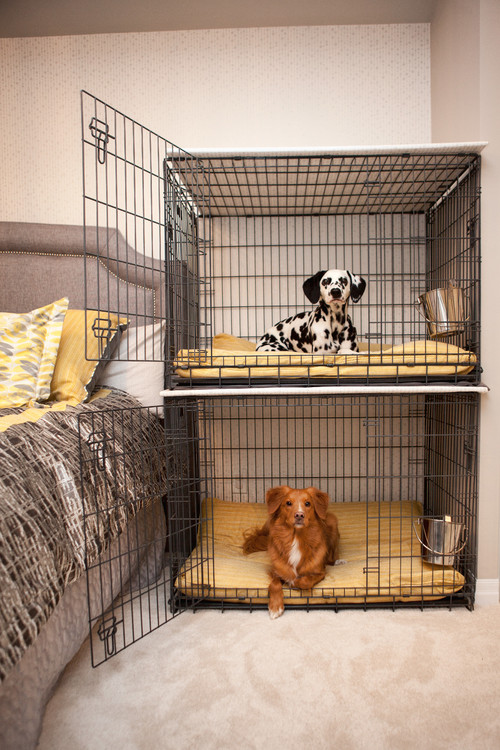 Stacked Dog Crates by Bed
