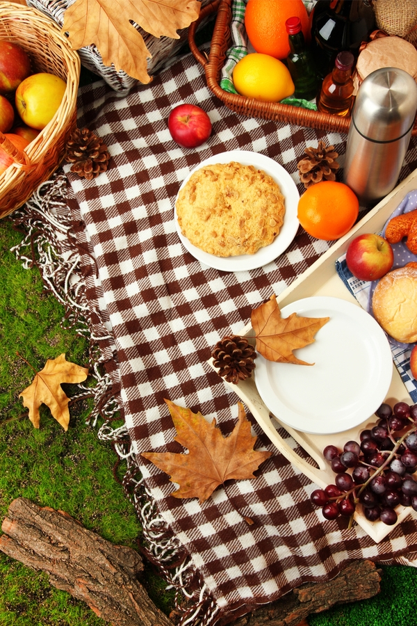 fall picnic ideas | fall | picnic | picnic ideas | rustic | rustic life | seasons