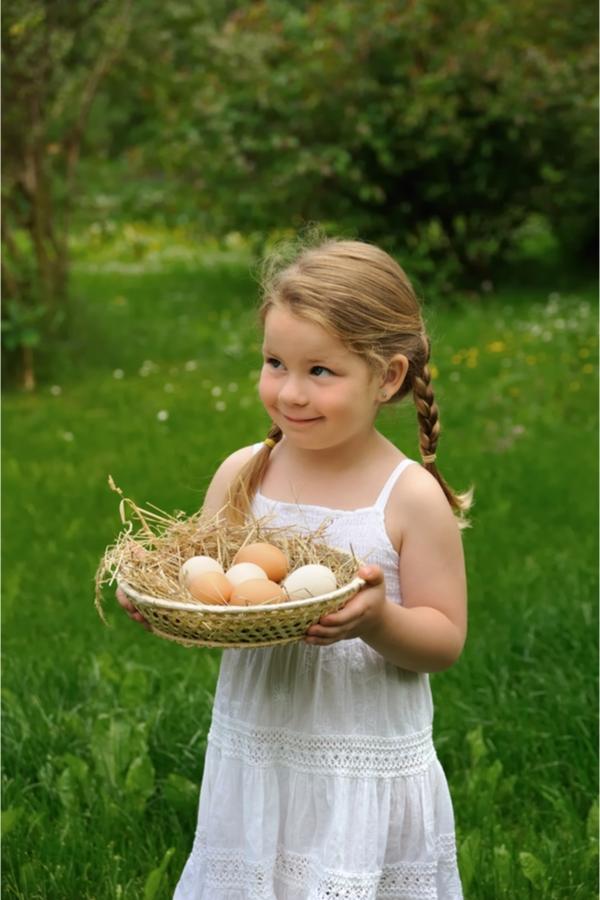 Raising Backyard Chickens | backyard chickens | raising chickens | rustic life | chickens | country living