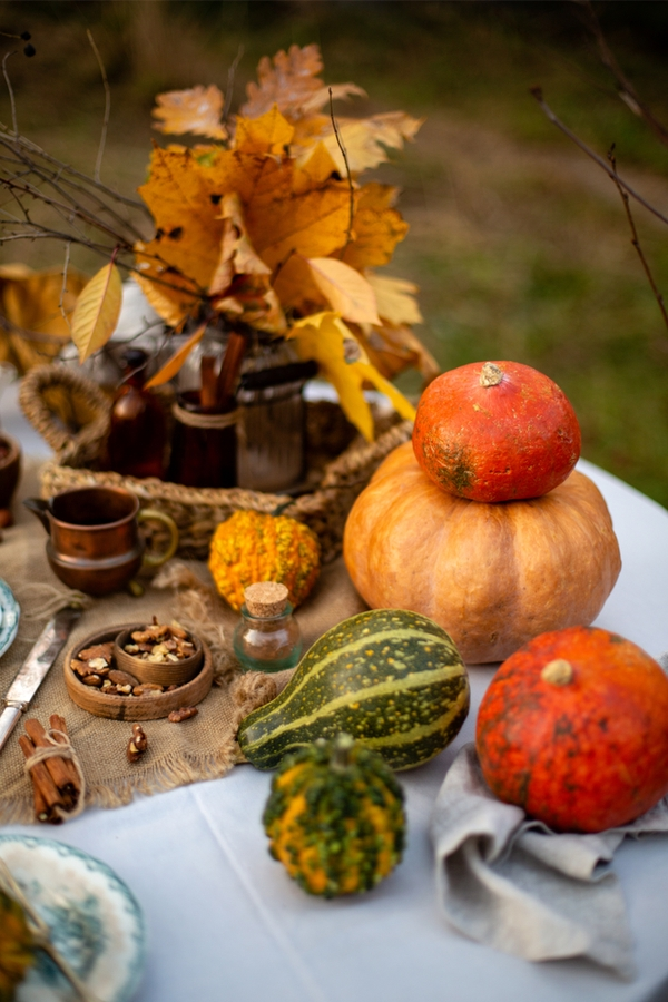 Rustic Outdoor Thanksgiving Dinner