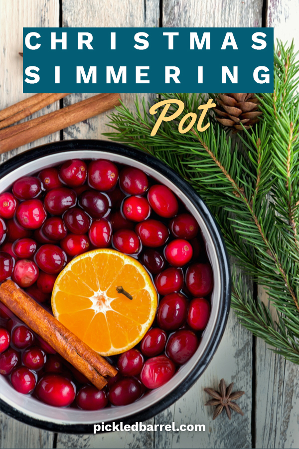 "The holidays are here so it just makes ""scents"" that you would want your home to be filled with Christmas aromas. You are not the only one. Everyone loves this. That's why a DIY Christmas simmering pot in a mason jar makes a treasured gift for family and friends. We have different recipes you can try. Don't forget to make a few for yourself and enjoy a Christmas scented home for the holidays. #DIYChristmassimmeringpots #scentedgifts"