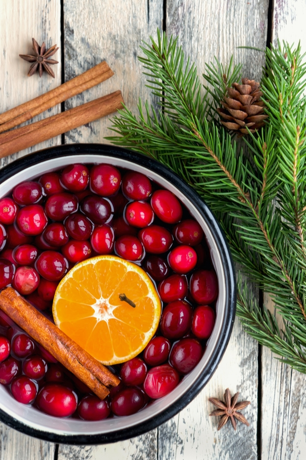 During the holidays, there's nothing better than filling your home with a delightful scent. These DIY simmering pot recipes will have your home smelling amazing!