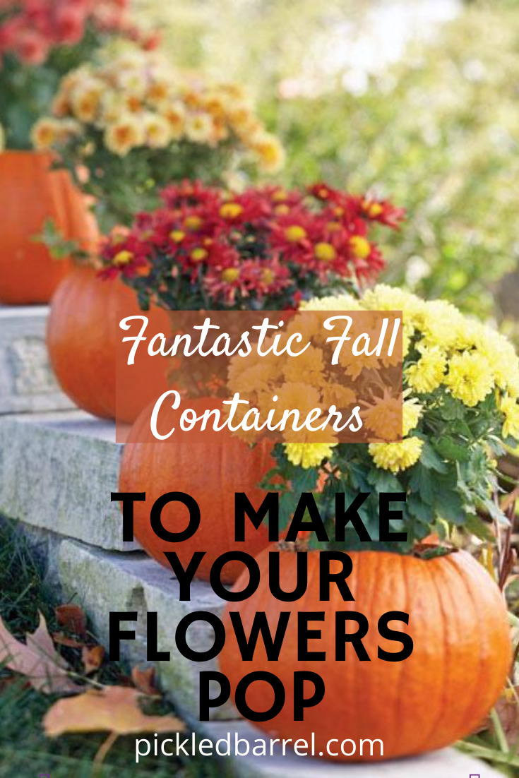 Fall might mean the end of summer, but it doesn't have to mean the end of flowers. These fall containers will add some spark to your porch or patio for weeks after the summer heat is over! #pickledbarrelblog #fallcontainers #coleus