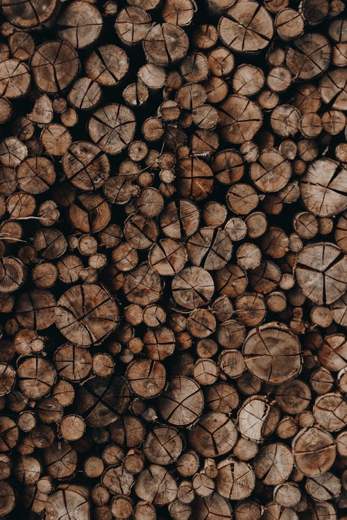 wooden logs stacked together